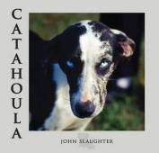 Catahoula: Louisiana State Dog