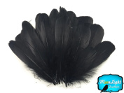 Feathers, Goose Feathers - Black Goose Nagoire Loose Feather - 5ml