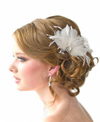 Jelinda® Women's Bridal Hair Fascinator Hair Clip
