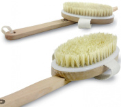 Premium Bath Body Brush with Long Handle - Best Natural Boar Bristles Body Brush for Shower - Exfoliating Body and Cellulite Brush Massager
