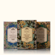 Kama Ayurveda ORGANIC HAIR colour KIT BY INDIANMEDICALSTORE