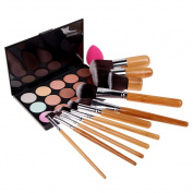 Chinatera 15 Colours Face Makeup Contour Cream Concealer Camouflage Palette + 11Pcs Powder Blush Eye Foundation Brushes + Makeup Sponge Puff
