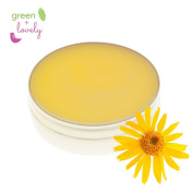 Nature's Herbal {Organic} Arnica Salve Muscle + Body Rub Eucalyptus Salve Balm Runner Ointment Spa Essential Oils