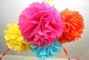 (16pcs) Rainbow Mixed Size Tissue Paper Pom Poms Lanterns Decorations