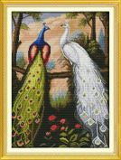 AngelGift Needlecrafts Stamped Counted Cross Stitch Set, Animal - Peacock Couples