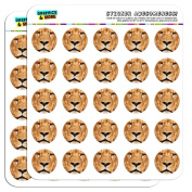 Portrait of a Male Lion 2.5cm Scrapbooking Crafting Stickers