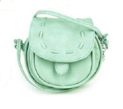 Mini Leather Messenger Bag - Pastel Green