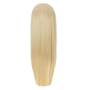 Hairaisers Live It Loud Straight Volumising Hairpiece Or Ponytail 60cm 24Sb
