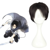 Mcoser 28cm Dark Brown Short Straight Hair- Attack on Titan-Levi/Rivaille Cosplay Wig
