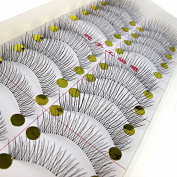 MapofBeauty 10 Pairs Natural Long Thin Makeup False Eyelashes