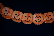 Quasimoon Orange Large Pumpkin Halloween Garland Banner (3m) by PaperLanternStore
