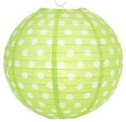 Lime Polka Dot Lantern - 36cm - Set of 2