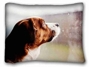 Custom Animal Pillow Cushion Case Cover One Sides Printed 50cm x 70cm suitable for X-Long Twin-bed