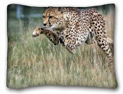 Custom Animal Pillowcase Cushion Cover Design Standard Size 50cm x 70cm One Sides suitable for Queen-bed