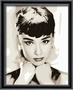 DIY PBN-paint by numbers Beautiful Audrey Hepburn 41cm by 50cm Frameless.