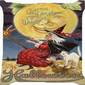 Cushion cover throw pillow case 46cm retro vintage Halloween witch ride flying broom pet white cat smiling moon night cute scary both sides image zipper