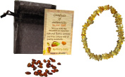 Pretty Baby Baltic Amber Baby Teething Bracelet / Anklet (Lemon) Genuine, All Natural, Eco Friendly, Stretchy, Safe, Strong, Flexible, Relief from Inflammation, Drooling, Gum Pain, Soreness, Rashes