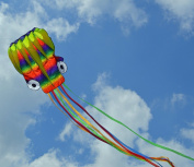 Frameless Parafoil Large Rainbow Octopus with String and Handle, Beautiful colours in the sky