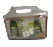 DALAN d`OLIVE PARABEN FREE TRAVEL KIT