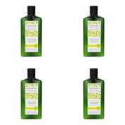 (4 PACK) - Andalou Sunflower & Citrus Brilliant Shine Conditioner | 340ml | 4 PACK - SUPER SAVER - SAVE MONEY