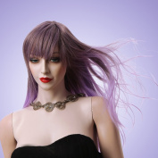 Ladies Long Wigs Purple Colour with a Bang Straight Hair Wig for Women Fashion Hair Style Hot Wig Manufacturer 2170