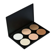 Gg Cosmetics Professional 6 Colours Contour Face Power Foundation Makeup Palette