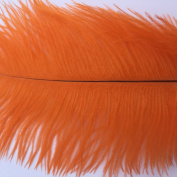 Generic Orange 10-12inch 25-30cm Ostrich Feather Home Decoration DIY Craft Pack of 10