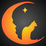 MOON CAT Stencil (size 11cm w x 11cm h) Reusable Stencils for Painting - Best Quality Christmas Project Ideas - Use on Walls, Floors, Fabrics, Glass, Wood, Cards, and More...