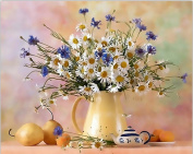 MailingArt Wooden Framed Paint By Number Flowers No Mixing / No Blending Canvas DIY Painting - Tea Flower