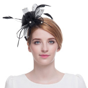 Winrembrandt Girl lovely Flower Mesh Feather Headwear for Party