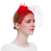 Winrembrandt Lady Meshed Fascinator With Feather Bowknot Flower for Wedding