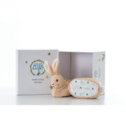 Beatrix Potter Peter Rabbit Booties Set