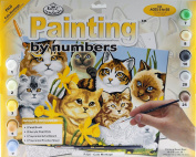 Royal Langnickel Junior LARGE Paint By Numbers Art Kit - Cats / Kitten Design 8+