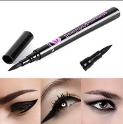 Professional 24 Hour Waterproof Eyeliner Long Lasting All Night Wear