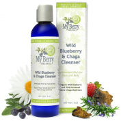 Wild Blueberry & Chaga Cleanser, Organic Wild Blueberry and Wild Harvested Maine Chaga Mushroom for Highest in Antioxidants