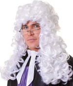 Mens Fancy Dress Halloween Party Judge Barrister Long Curly Artificial Wig White