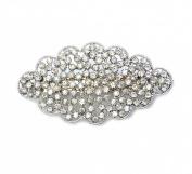 Faship Gorgeous Clear Floral Hair Barrette Clip