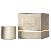 Plant Profusion Regenerative Night Cream