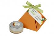 Brittanies Thyme Organic Lip Scrub - Vanilla - .1980ml