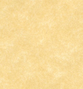 New Champagne Parchment Stationery Paper Size 8.5 X 14 on 27kg.
