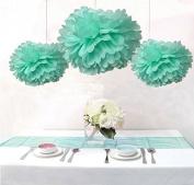Saitec ® 12PCS Mixed Mint Tissue Paper Flower Pom Poms Pompoms Garland Wedding Bridal Shower Birthday Party Decor