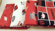 University of Arkansas - Fat Quarter Bundle From Quylte