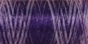 Sulky Of America 60wt Variegated Polylite Thread, 1650 yd, Purple Rain