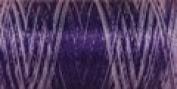 Sulky Of America 60wt Variegated Polylite Thread, 1650 yd, Purple Rain