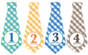 Monthly Baby Ties, Plaid, Baby Boy Month Stickers, Baby Necktie