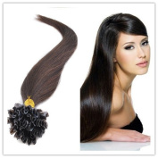 Sexyqueenhair 100g 100 STRANDS Pre Bonded Nail U Tip 100 % Remy Human Straight Hair Extensions 50cm Colour #2