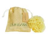 Livinganic 5.1cm - 6.4cm Livinganic Natural Silk Fine Mediterranean Sea Sponge for Facial