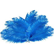 Ewandastore 50pcs Natural 10-12inch(15-20cm) Home Decor Ostrich Feathers Plume Party Wedding Decorations with a Card Sleeve