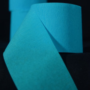 Quasimoon Turquoise Crepe Paper Streamer Party Decorations (60m Total, 3 Pack) by PaperLanternStore