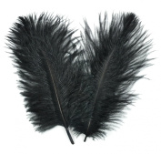 Touch of Nature 38161 Ostrich Plume, 5 to 20cm , Black